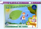 La fotosíntesis | Recurso educativo 47188