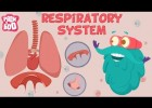 Breathing and the respiratory system | Recurso educativo 724541