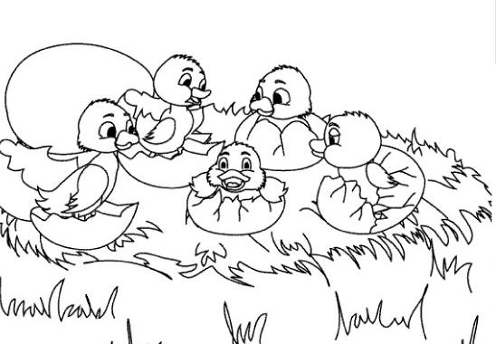 Dibujos De Patos Para Colorear Para Niños: Colorear Cuentos: El Patito Feo